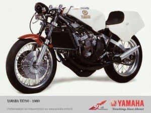 750-tz-300x225
